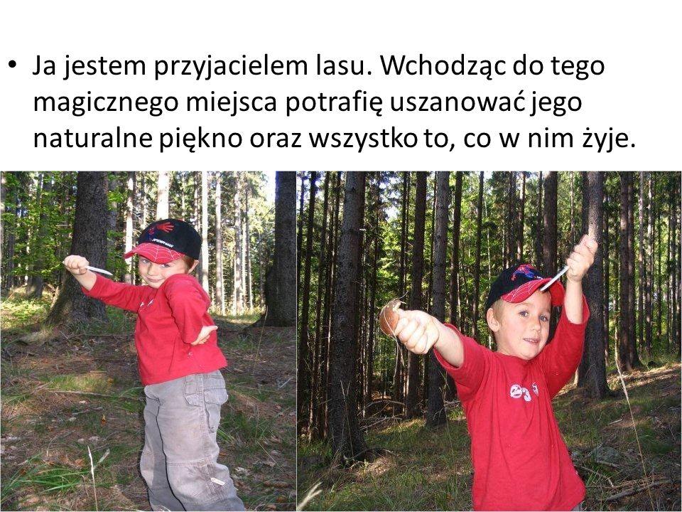 Ja jestem przyjacielem lasu.