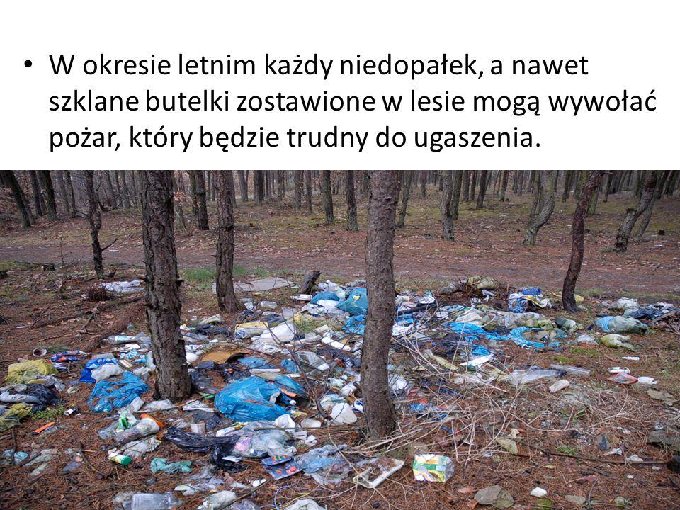 W okresie letnim każdy niedopałek, a nawet szklane butelki zostawione w lesie mogą wywołać pożar, który będzie trudny do ugaszenia.