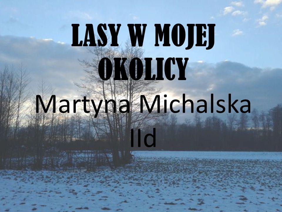 LASY W MOJEJ OKOLICY Martyna Michalska IId