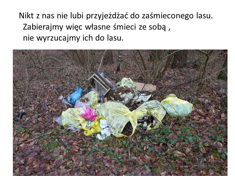 Nikt z nas nie lubi przyjeżdżać do zaśmieconego lasu. Zabierajmy więc własne śmieci ze sobą, nie wyrzucajmy ich do lasu.