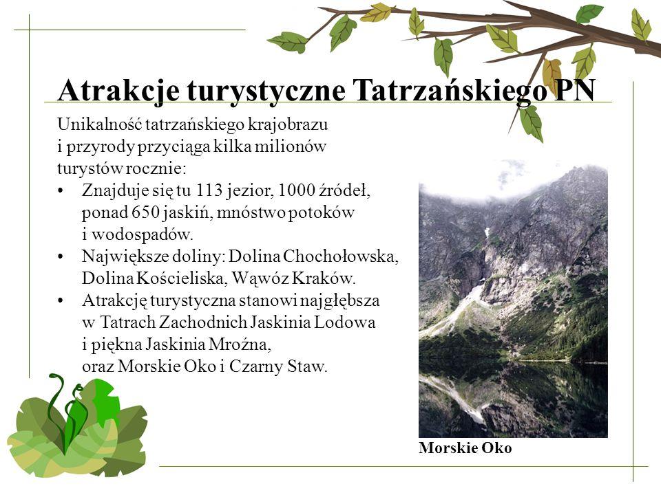Atrakcje turystyczne Tatrzańskiego PN Unikalność tatrzańskiego krajobrazu i przyrody przyciąga kilka milionów turystów rocznie: Znajduje się tu 113 jezior, 1000 źródeł, ponad 650 jaskiń, mnóstwo potoków i wodospadów.