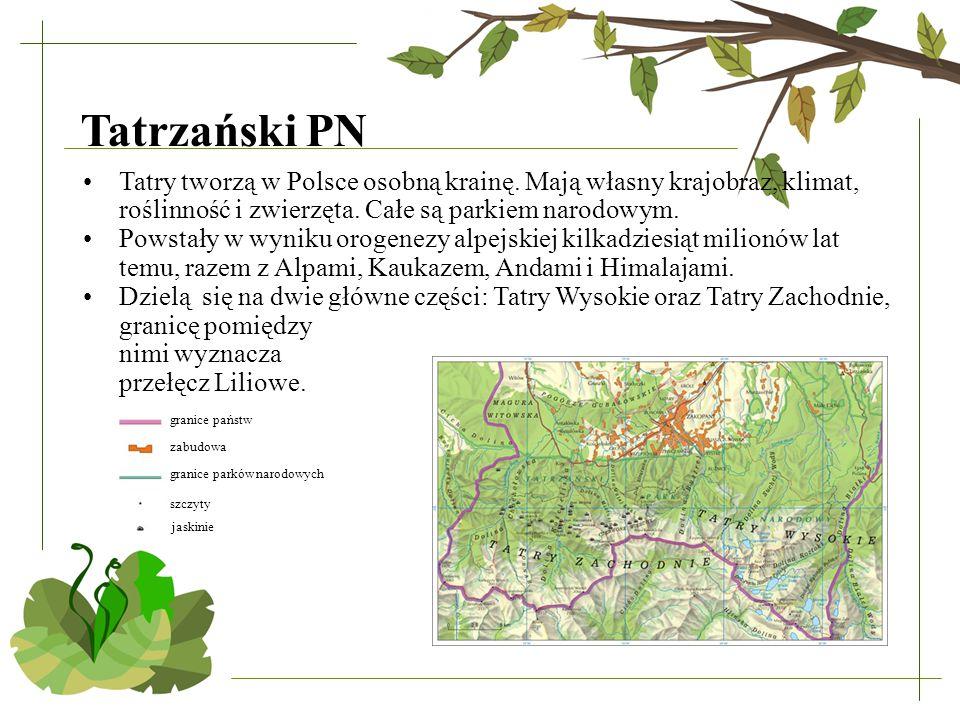Tatrzański PN Tatry tworzą w Polsce osobną krainę. Mają własny krajobraz, klimat, roślinność i zwierzęta. Całe są parkiem narodowym. Powstały w wyniku