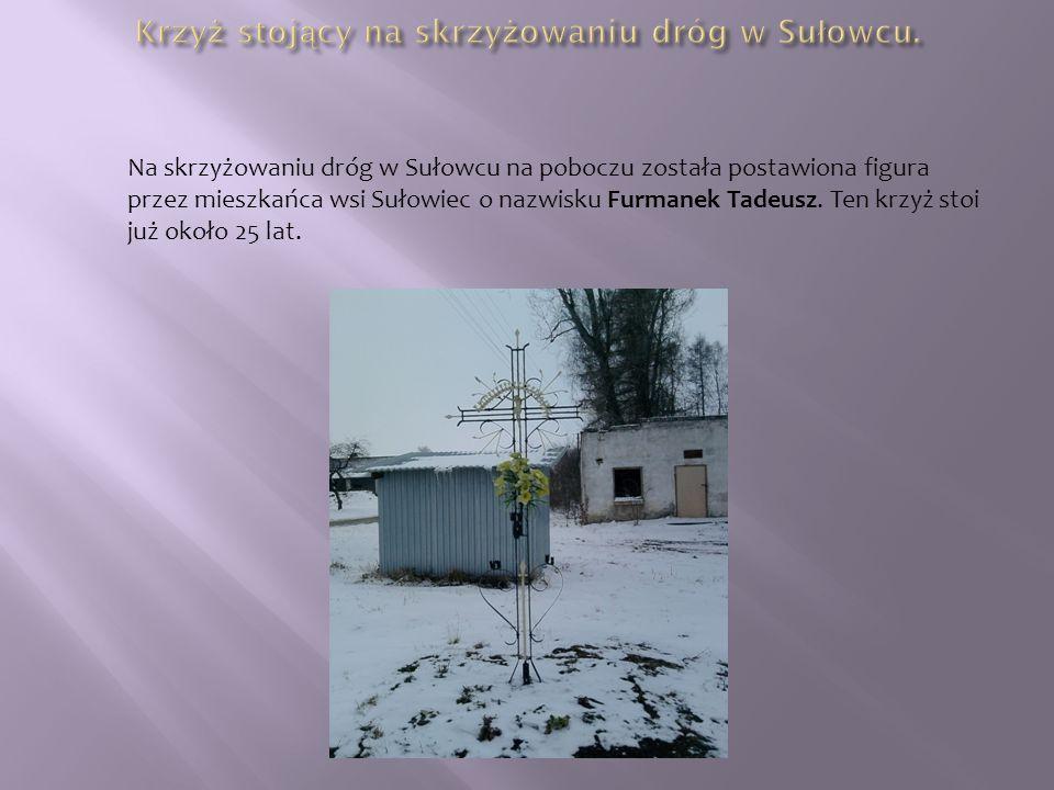 Na skrzyżowaniu dróg w Sułowcu na poboczu została postawiona figura przez mieszkańca wsi Sułowiec o nazwisku Furmanek Tadeusz.