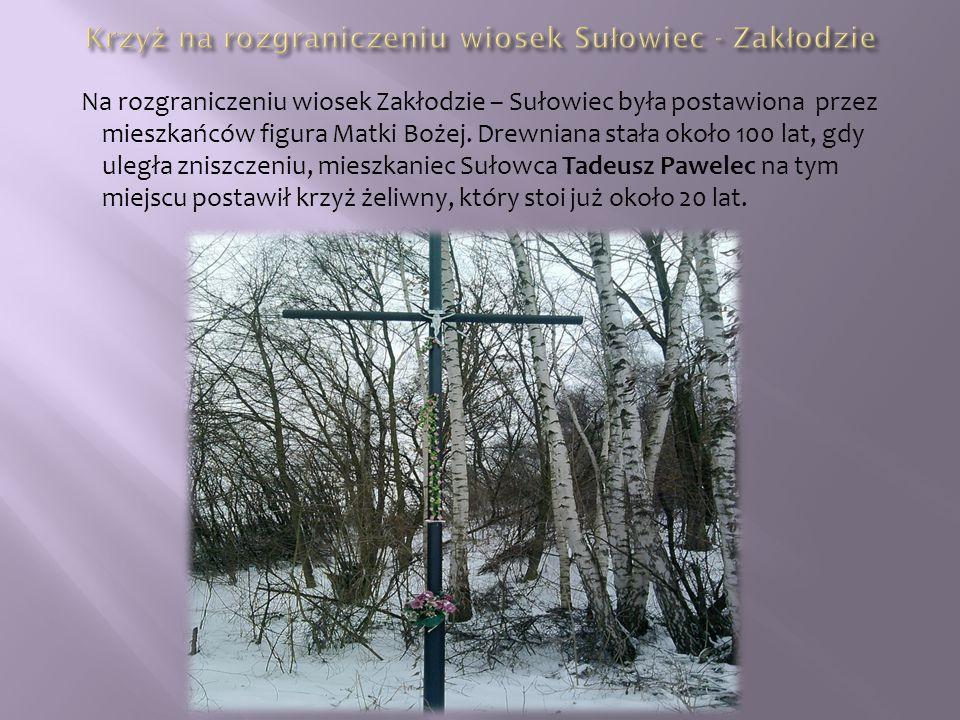 Na rozgraniczeniu wiosek Zakłodzie – Sułowiec była postawiona przez mieszkańców figura Matki Bożej.