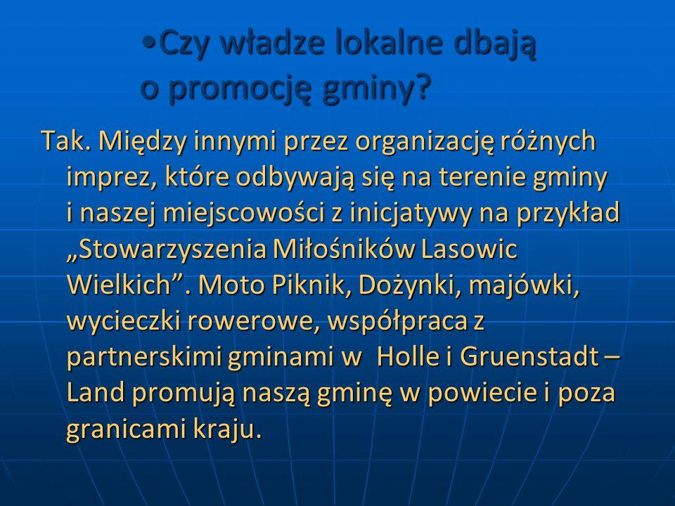 Czy władze lokalne dbają o promocję gminy Czy władze lokalne dbają o promocję gminy.