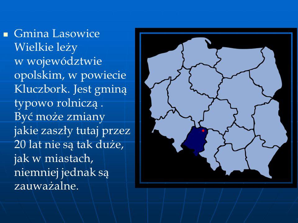 Gmina Lasowice Wielkie leży w województwie opolskim, w powiecie Kluczbork. Jest gminą typowo rolniczą. Być może zmiany jakie zaszły tutaj przez 20 lat