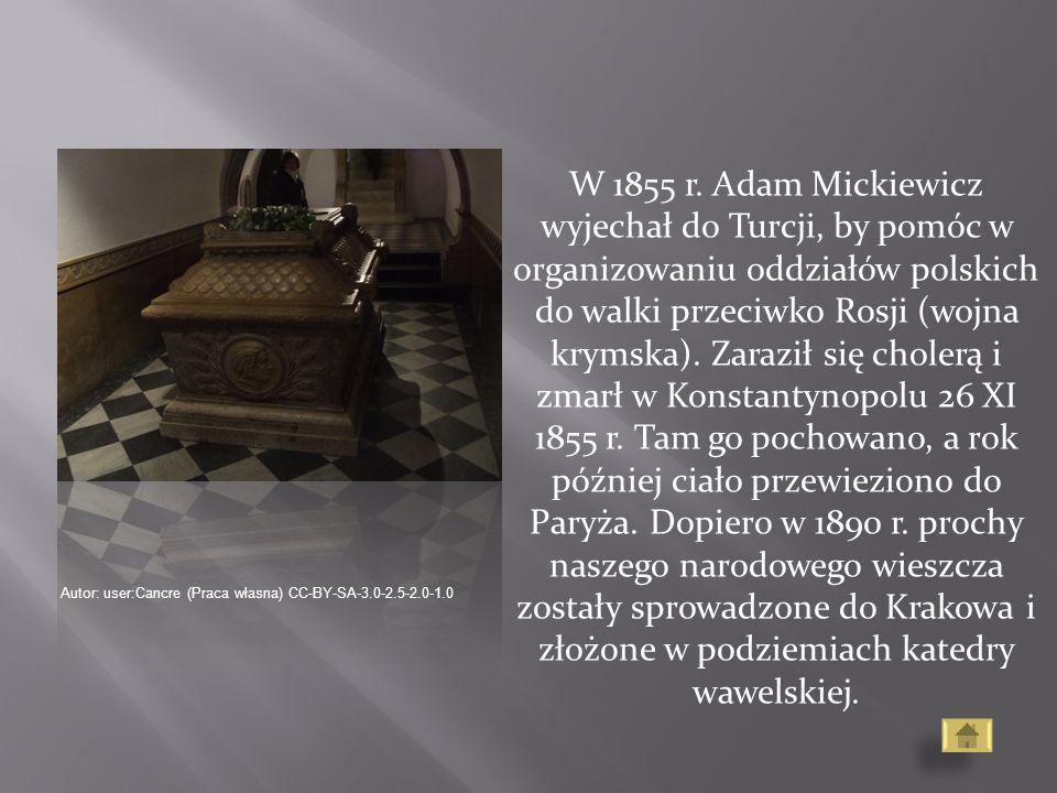 W 1855 r. Adam Mickiewicz wyjechał do Turcji, by pomóc w organizowaniu oddziałów polskich do walki przeciwko Rosji (wojna krymska). Zaraził się choler
