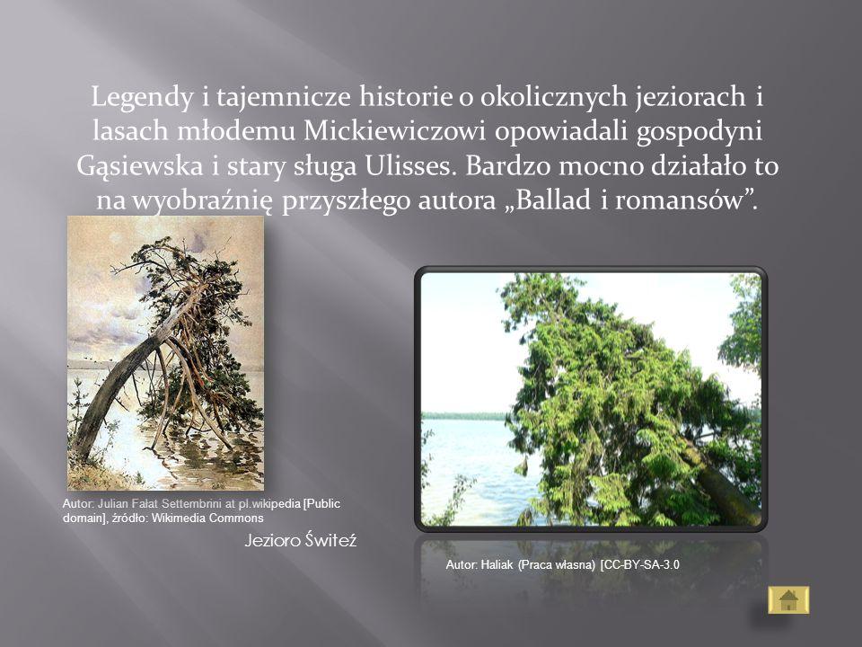 Legendy i tajemnicze historie o okolicznych jeziorach i lasach młodemu Mickiewiczowi opowiadali gospodyni Gąsiewska i stary sługa Ulisses. Bardzo mocn