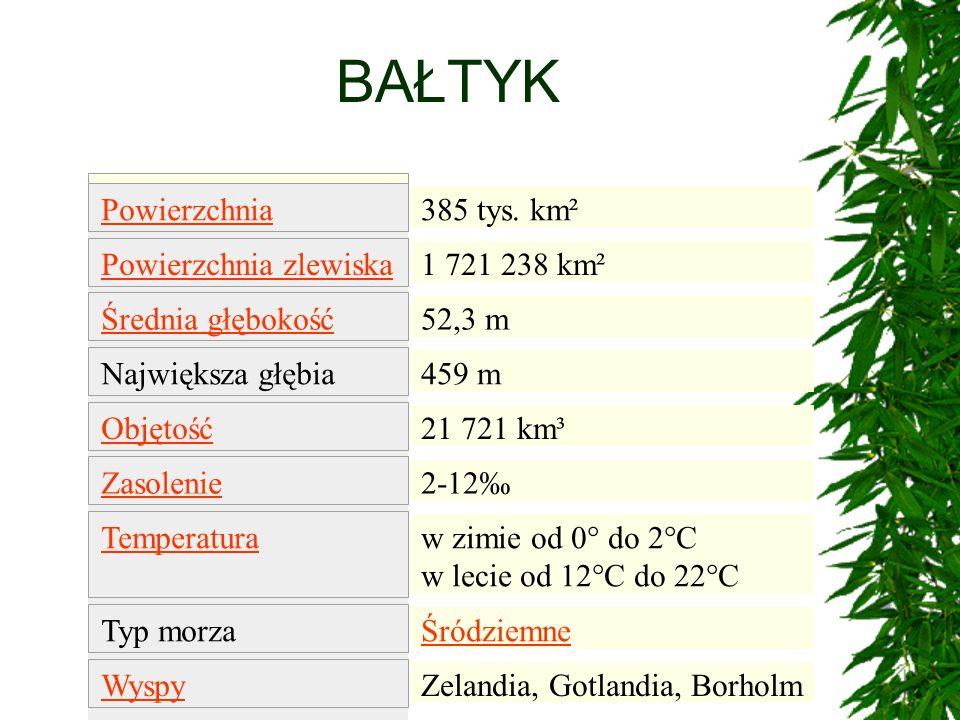 BAŁTYK 385 tys. km² 1 721 238 km² 52,3 m 459 m 21 721 km³ 2-12‰ w zimie od 0° do 2°C w lecie od 12°C do 22°C Śródziemne Zelandia, Gotlandia, Borholm P