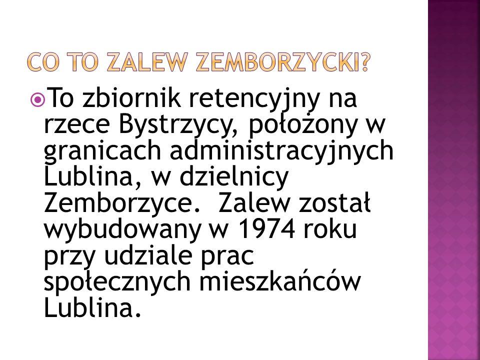  To zbiornik retencyjny na rzece Bystrzycy, położony w granicach administracyjnych Lublina, w dzielnicy Zemborzyce.