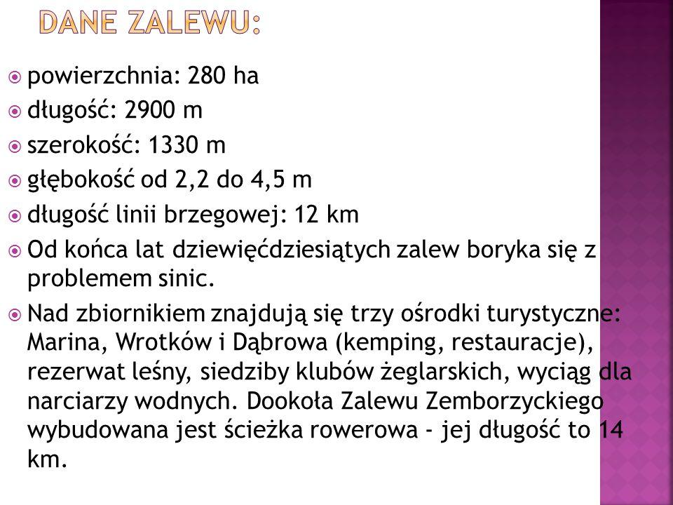  powierzchnia: 280 ha  długość: 2900 m  szerokość: 1330 m  głębokość od 2,2 do 4,5 m  długość linii brzegowej: 12 km  Od końca lat dziewięćdziesiątych zalew boryka się z problemem sinic.