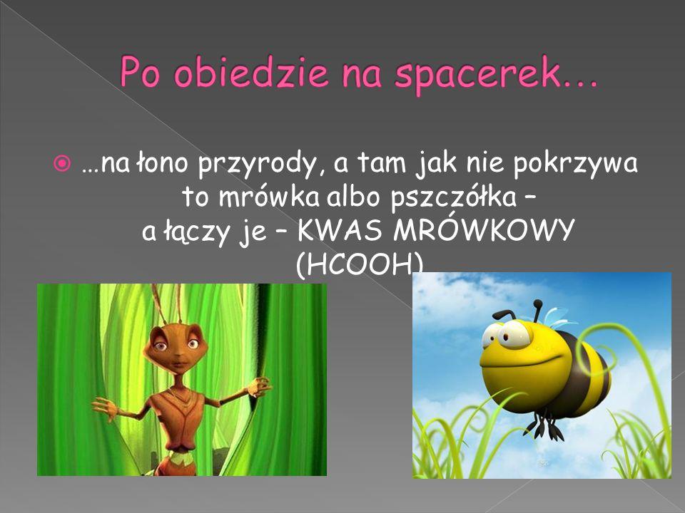  …na łono przyrody, a tam jak nie pokrzywa to mrówka albo pszczółka – a łączy je – KWAS MRÓWKOWY (HCOOH)