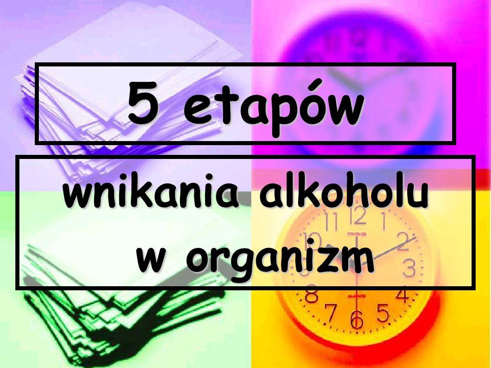 5 etapów wnikania alkoholu w organizm w organizm