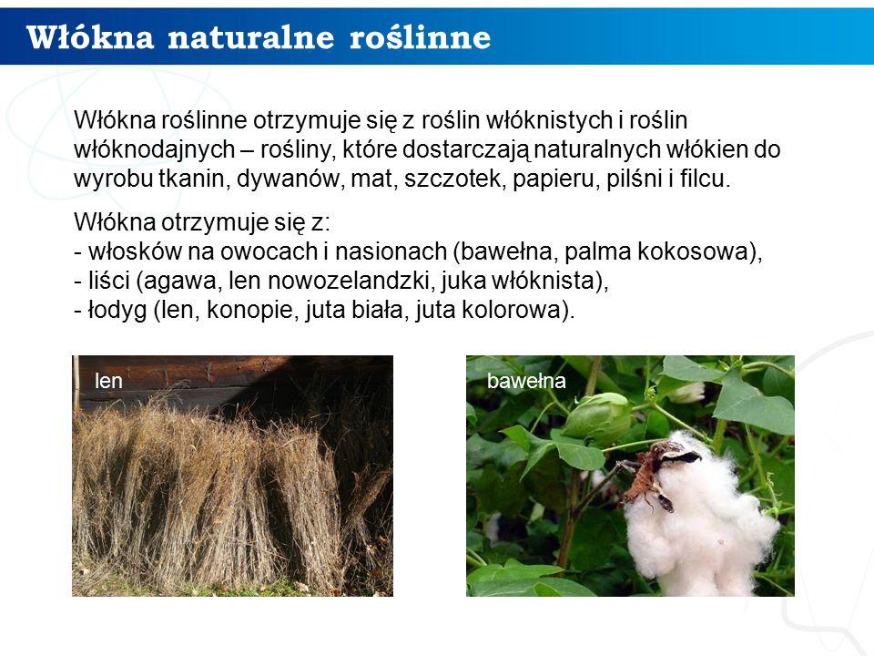 Włókna naturalne roślinne 5 Włókna roślinne otrzymuje się z roślin włóknistych i roślin włóknodajnych – rośliny, które dostarczają naturalnych włókien