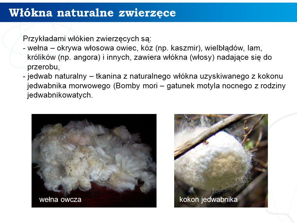 Włókna naturalne zwierzęce 6 Przykładami włókien zwierzęcych są: - wełna – okrywa włosowa owiec, kóz (np. kaszmir), wielbłądów, lam, królików (np. ang