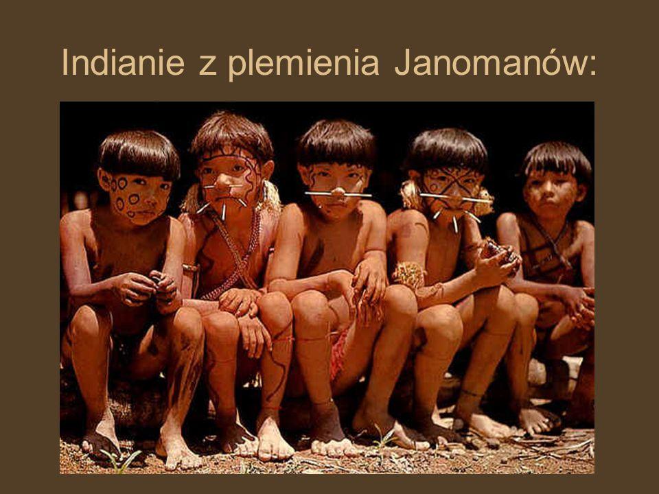 Indianie z plemienia Janomanów: