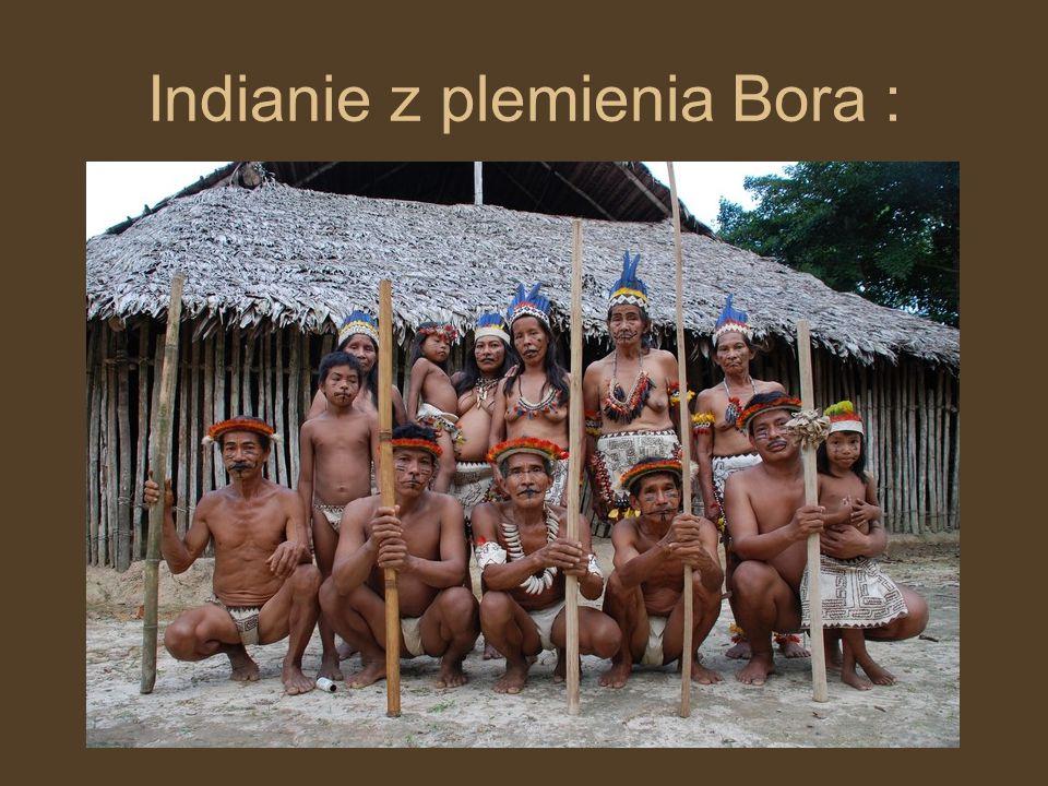 Indianie z plemienia Aqua :