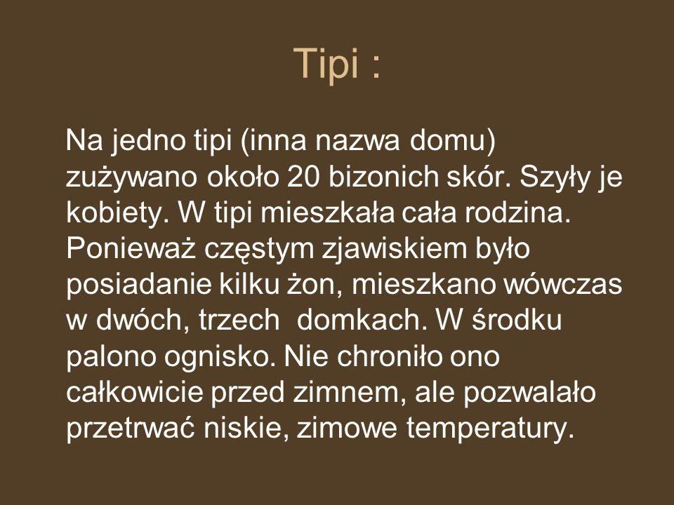 Tipi : Na jedno tipi (inna nazwa domu) zużywano około 20 bizonich skór. Szyły je kobiety. W tipi mieszkała cała rodzina. Ponieważ częstym zjawiskiem b