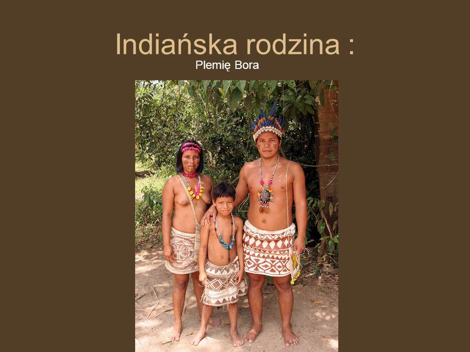 BROŃ INDIAŃSKA Nieodłącznym elementem życia codziennego Indian były międzyplemienne walki.