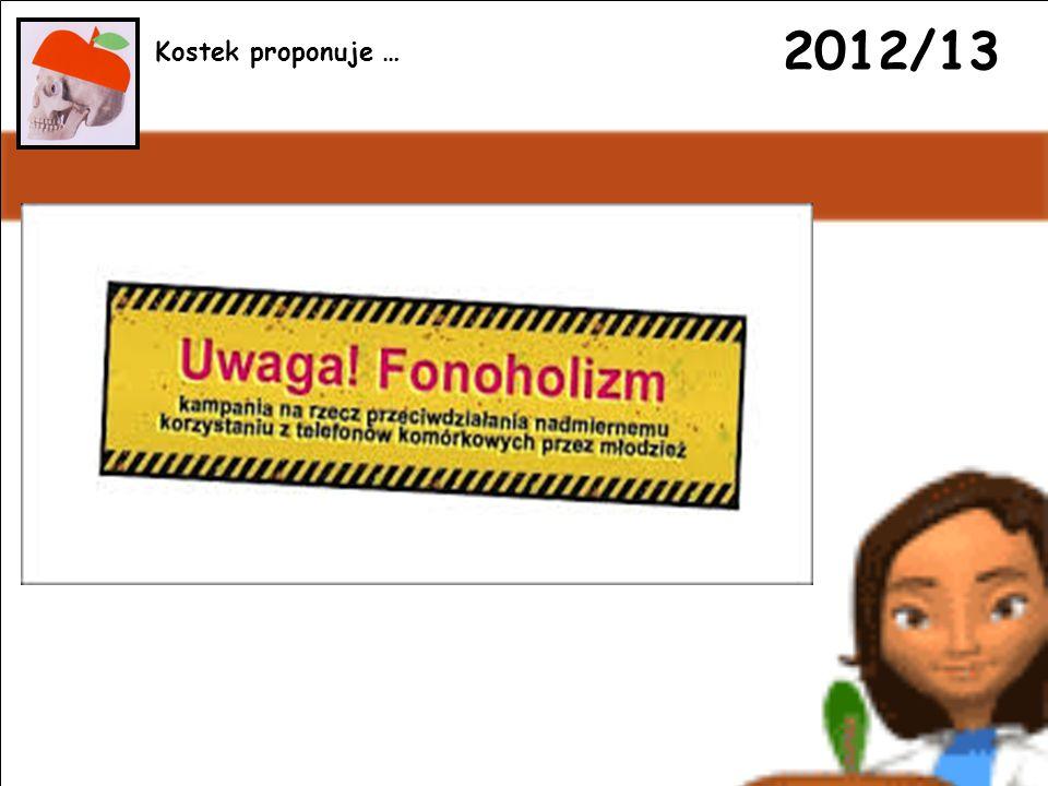 2012/13 Kostek proponuje …