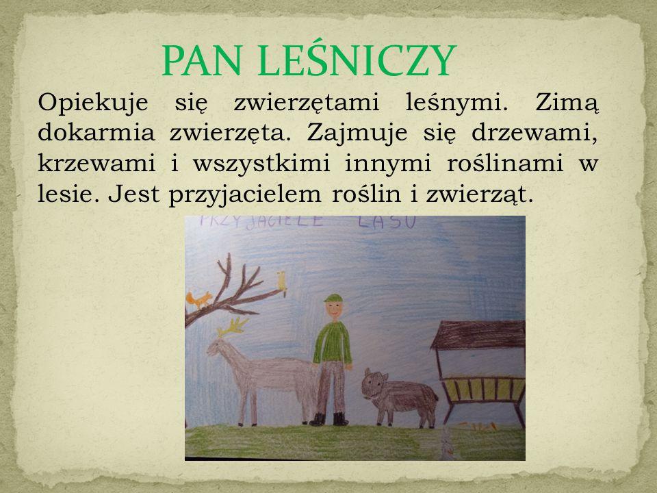 PAN LEŚNICZY Opiekuje się zwierzętami leśnymi. Zimą dokarmia zwierzęta. Zajmuje się drzewami, krzewami i wszystkimi innymi roślinami w lesie. Jest prz