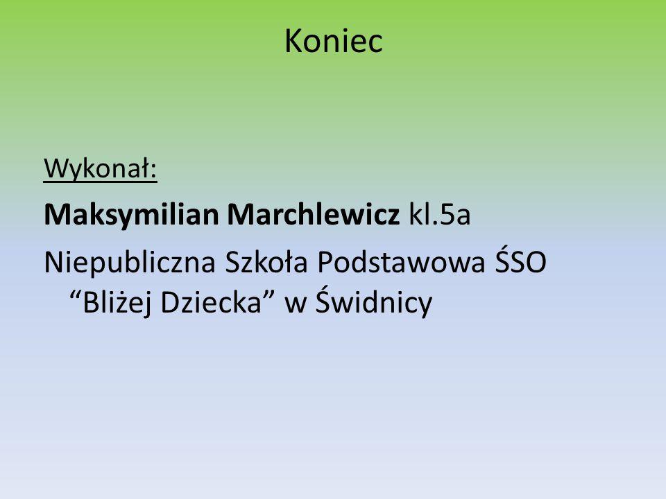 """Koniec Wykonał: Maksymilian Marchlewicz kl.5a Niepubliczna Szkoła Podstawowa ŚSO """"Bliżej Dziecka"""" w Świdnicy"""