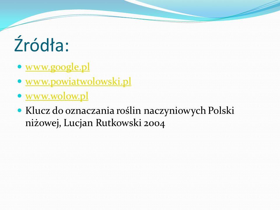 Źródła: www.google.pl www.powiatwolowski.pl www.wolow.pl Klucz do oznaczania roślin naczyniowych Polski niżowej, Lucjan Rutkowski 2004