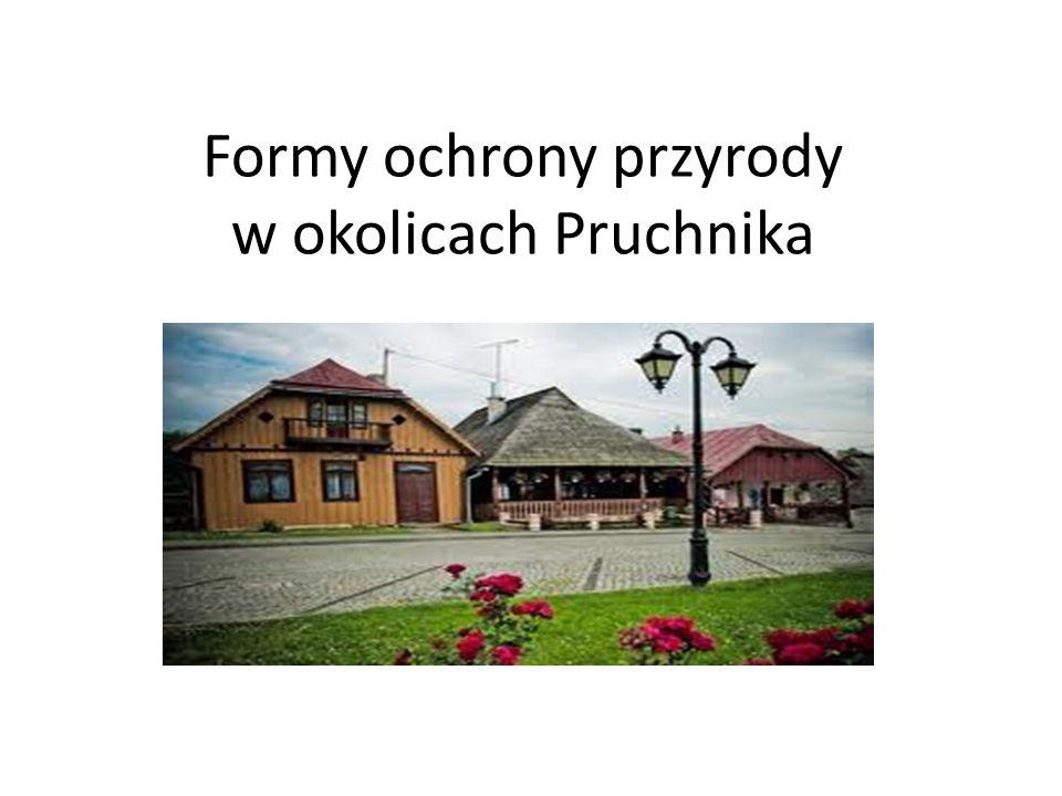 Bieszczadzki Park Narodowy Zajmuje południowo-wschodnią część województwa podkarpackiego.