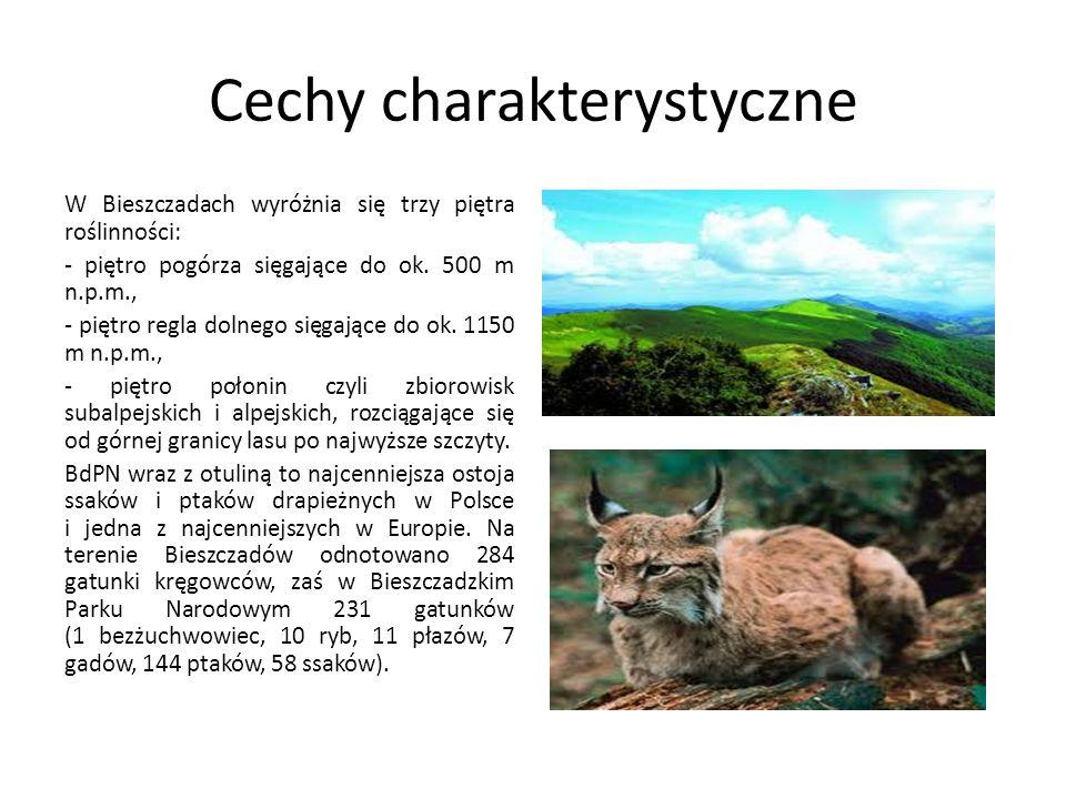 Cechy charakterystyczne W Bieszczadach wyróżnia się trzy piętra roślinności: - piętro pogórza sięgające do ok. 500 m n.p.m., - piętro regla dolnego si