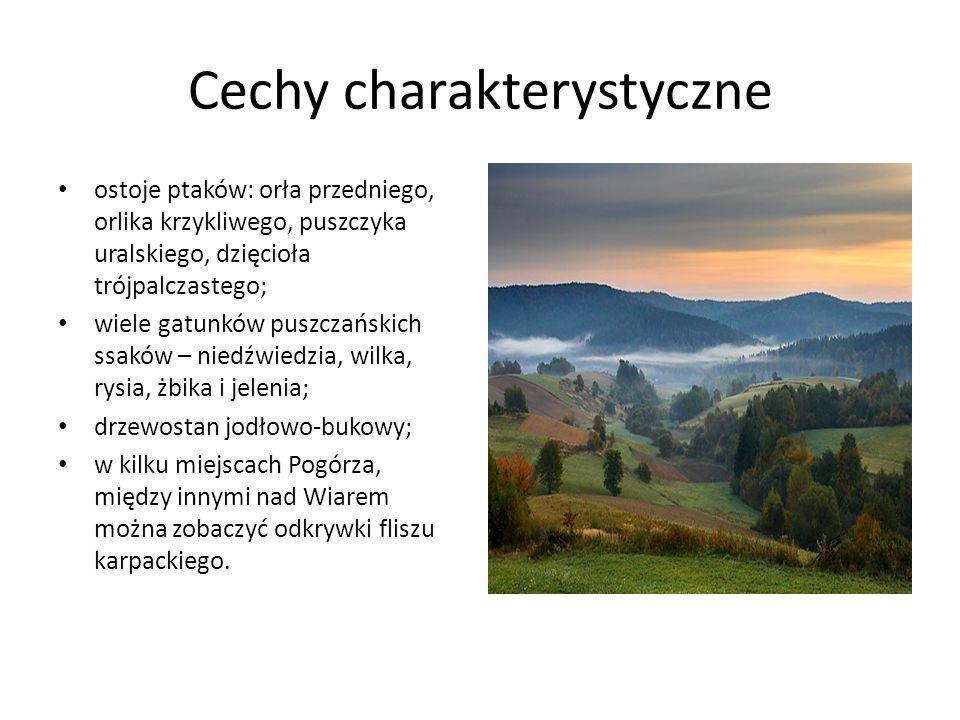 REZERWAT PRZYRODY Szachownica Kostkowata w Stubnie Powiat przemyski, gm.