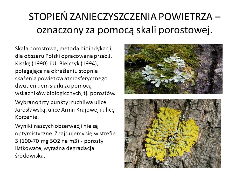 STOPIEŃ ZANIECZYSZCZENIA POWIETRZA – oznaczony za pomocą skali porostowej. Skala porostowa, metoda bioindykacji, dla obszaru Polski opracowana przez J