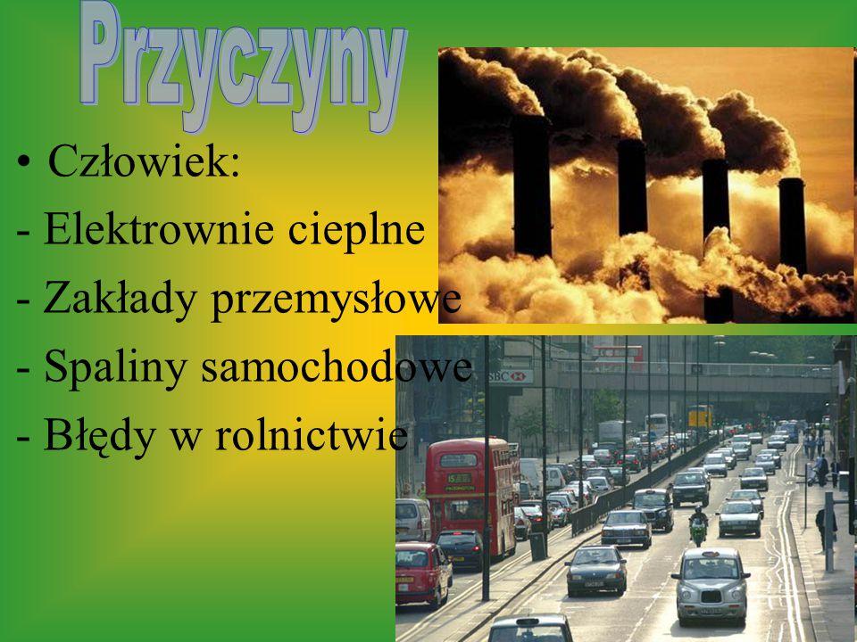 Człowiek: - Elektrownie cieplne - Zakłady przemysłowe - Spaliny samochodowe - Błędy w rolnictwie