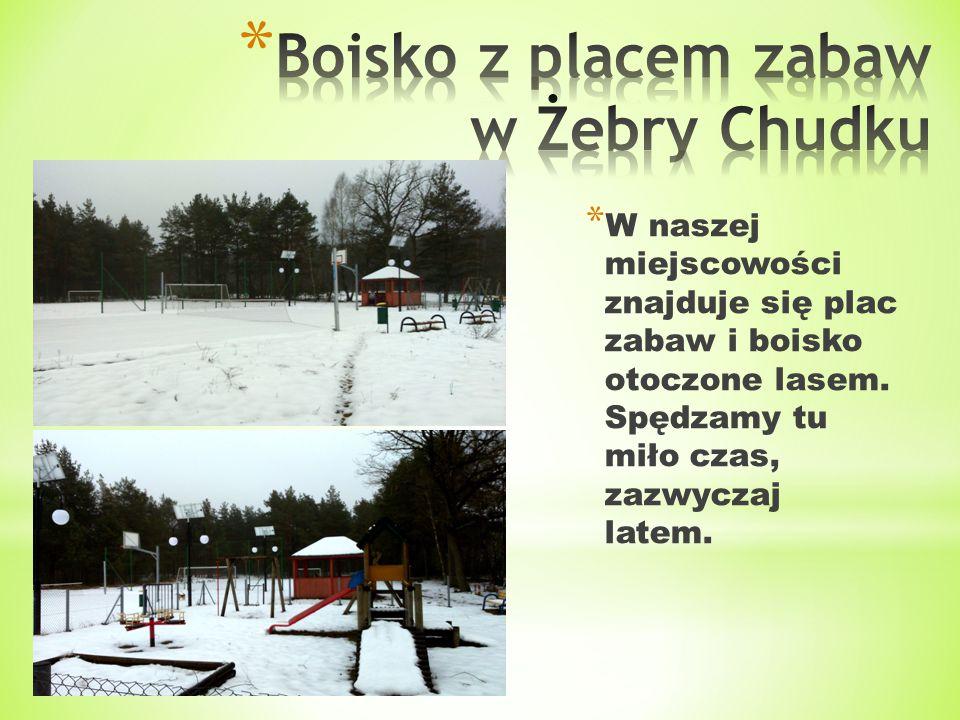 * W naszej miejscowości znajduje się plac zabaw i boisko otoczone lasem. Spędzamy tu miło czas, zazwyczaj latem.