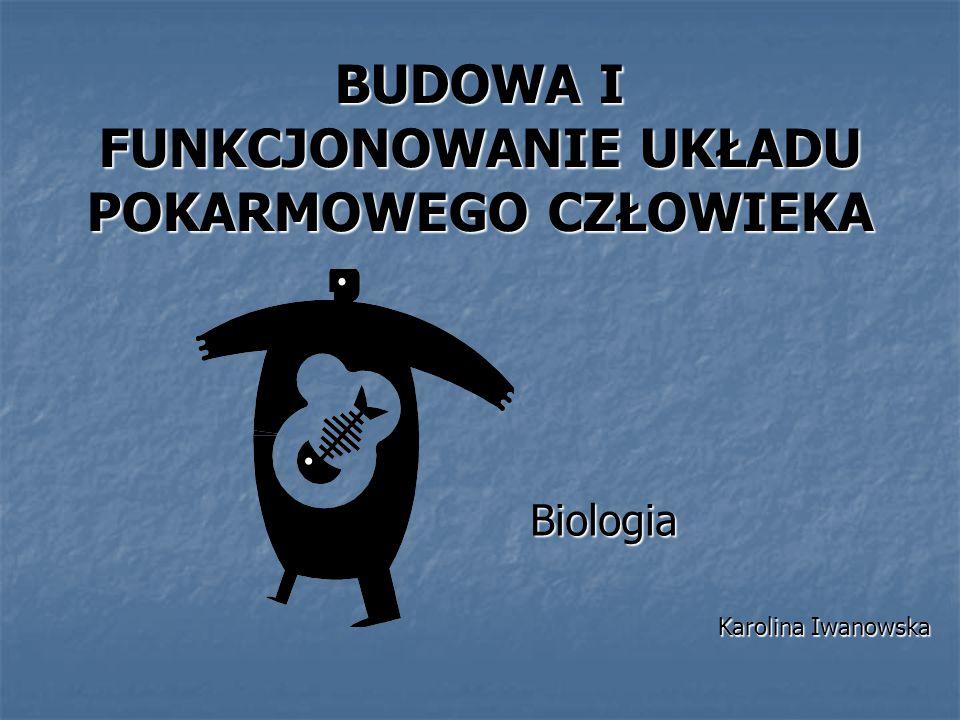 BUDOWA I FUNKCJONOWANIE UKŁADU POKARMOWEGO CZŁOWIEKA Biologia Karolina Iwanowska