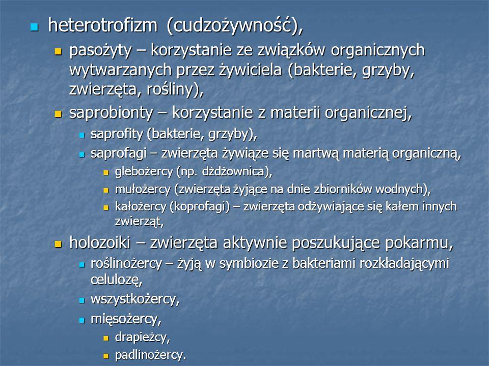 heterotrofizm (cudzożywność), heterotrofizm (cudzożywność), pasożyty – korzystanie ze związków organicznych wytwarzanych przez żywiciela (bakterie, gr
