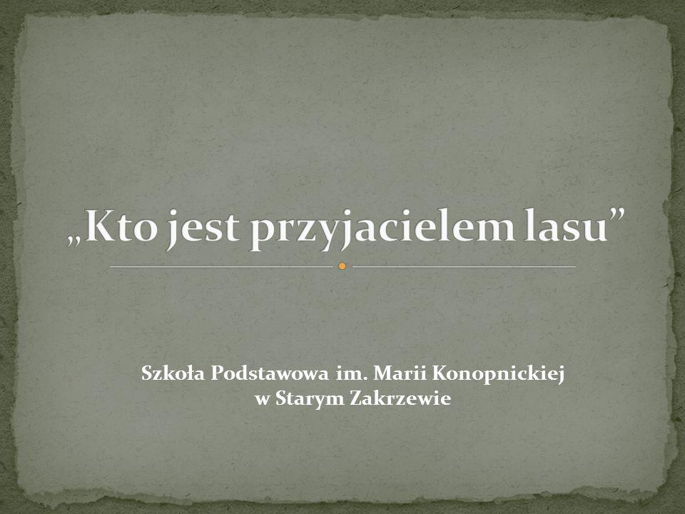 Szkoła Podstawowa im. Marii Konopnickiej w Starym Zakrzewie