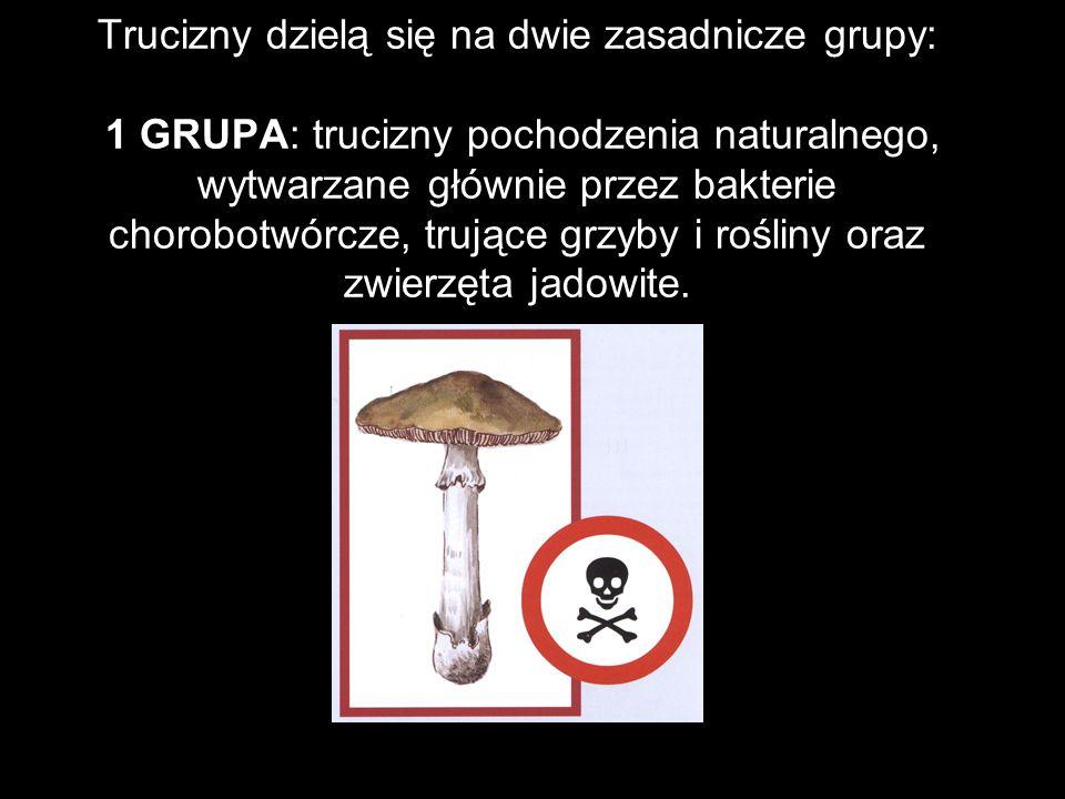 Trucizny dzielą się na dwie zasadnicze grupy: 1 GRUPA: trucizny pochodzenia naturalnego, wytwarzane głównie przez bakterie chorobotwórcze, trujące grz