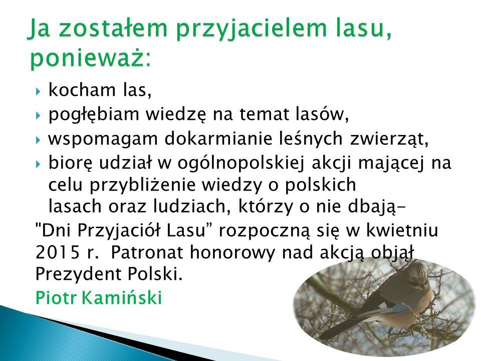  kocham las,  pogłębiam wiedzę na temat lasów,  wspomagam dokarmianie leśnych zwierząt,  biorę udział w ogólnopolskiej akcji mającej na celu przyb
