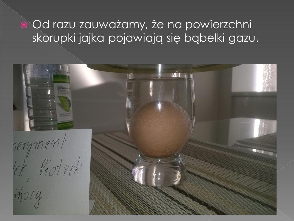  Od razu zauważamy, że na powierzchni skorupki jajka pojawiają się bąbelki gazu.
