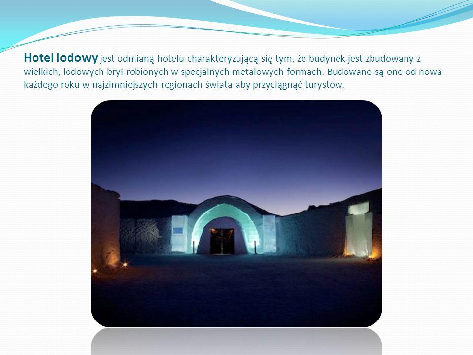 Hotel lodowy jest odmianą hotelu charakteryzującą się tym, że budynek jest zbudowany z wielkich, lodowych brył robionych w specjalnych metalowych form