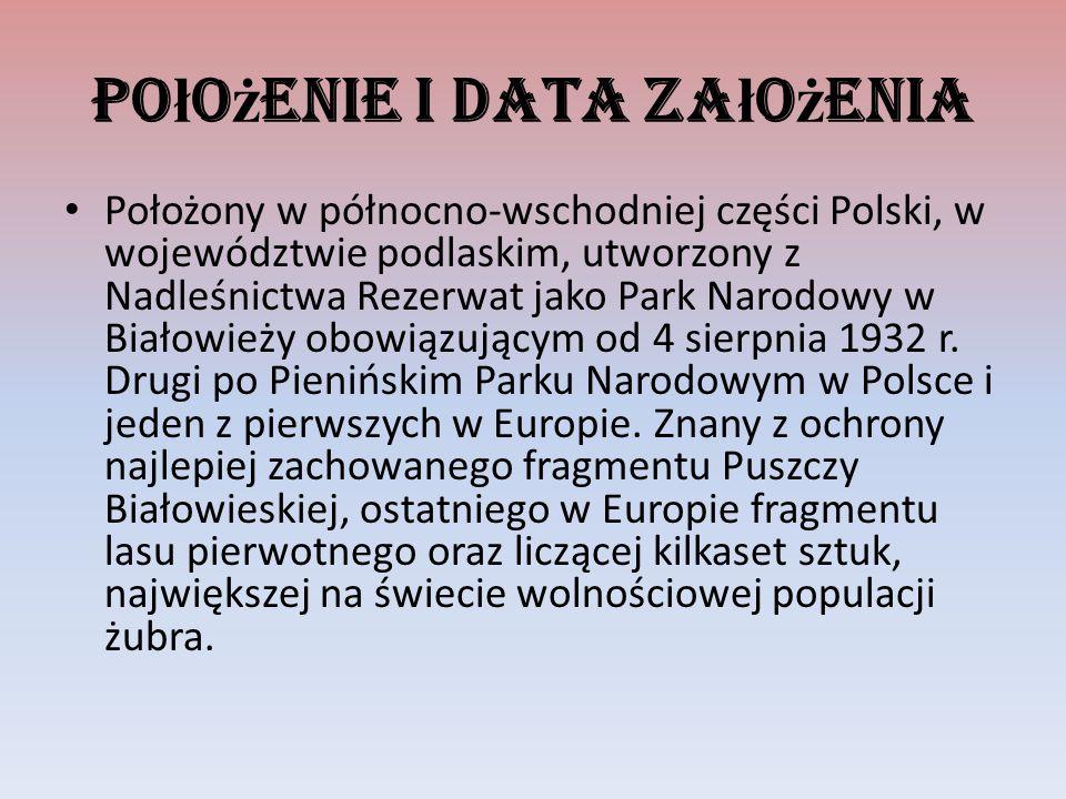 Po ł o ż enie i data za ł o ż enia Położony w północno-wschodniej części Polski, w województwie podlaskim, utworzony z Nadleśnictwa Rezerwat jako Park Narodowy w Białowieży obowiązującym od 4 sierpnia 1932 r.