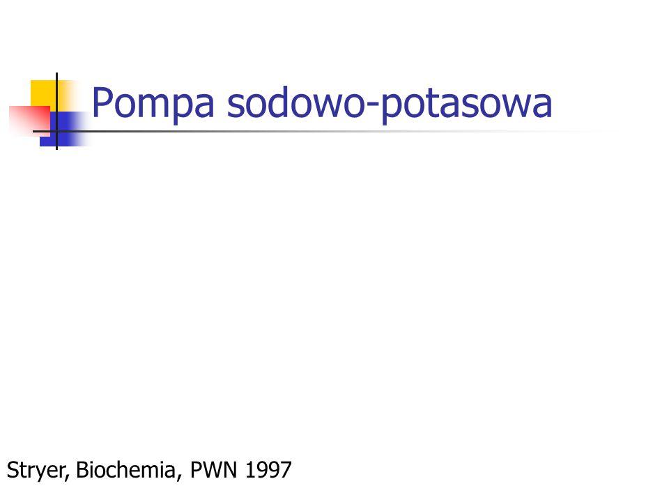 Pompa sodowo-potasowa Stryer, Biochemia, PWN 1997