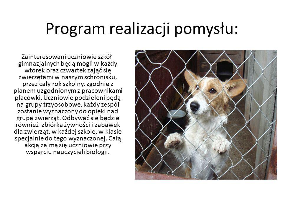 Program realizacji pomysłu: Zainteresowani uczniowie szkół gimnazjalnych będą mogli w każdy wtorek oraz czwartek zająć się zwierzętami w naszym schron