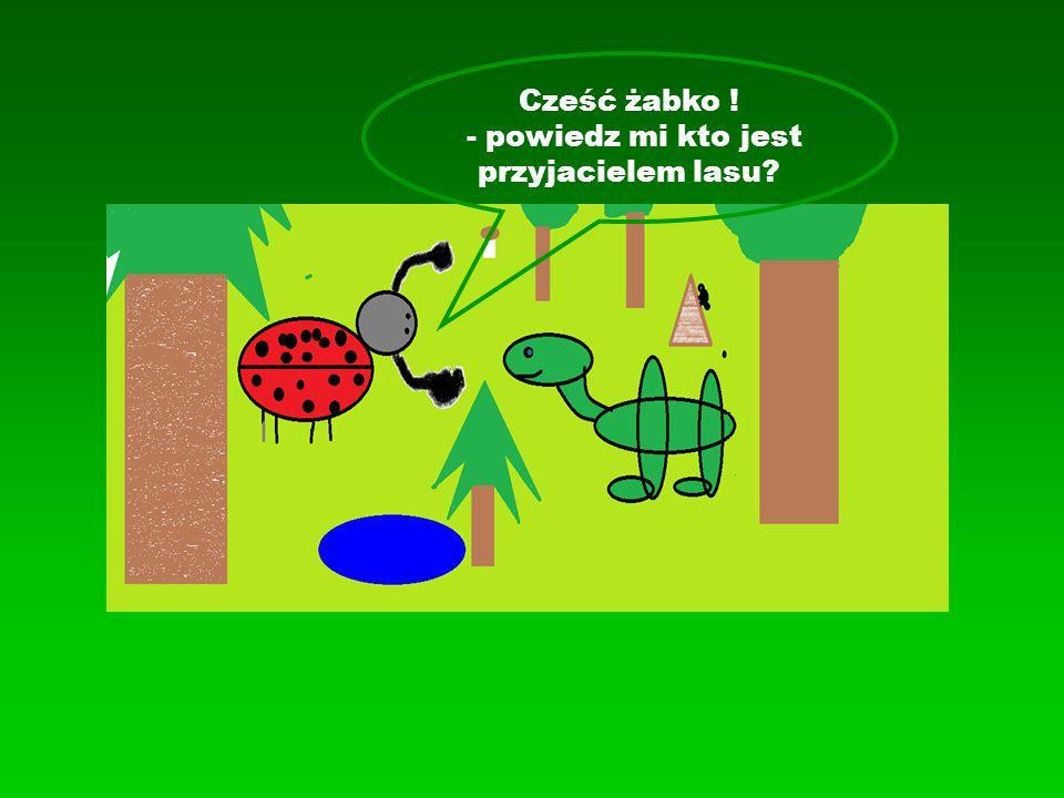 -Wszyscy ludzie którzy kochają przyrodę, rośliny i zwierzęta, a w szczególności: strażnicy przyrody, leśniczy, ludzie pomagający sadzić iglaki i dokarmiać zwierzęta w lesie w czasie zimy oraz ci, którzy chronią piękne tereny Biedroneczko: przyjaciółmi lasu są: