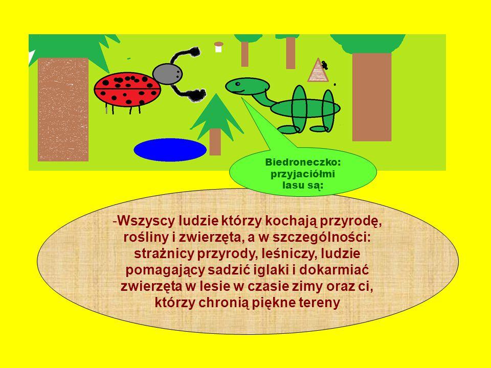 Wiewióreczko: lasy oczyszczają powietrze, zatrzymują pyły i gazy, dzięki nim mamy czyste powietrze