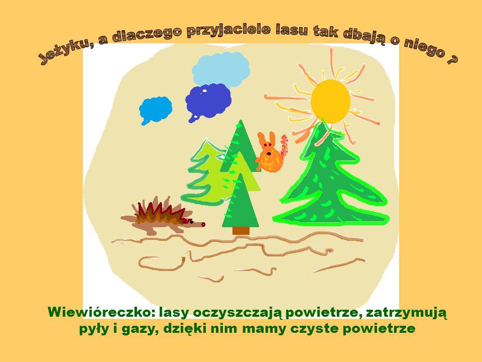  Produkuje tlen potrzebny do życia  Zmniejsza ilość dwutlenku węgla  Tłumi hałas Przyjaciele lasu chronią go, gdyż las: