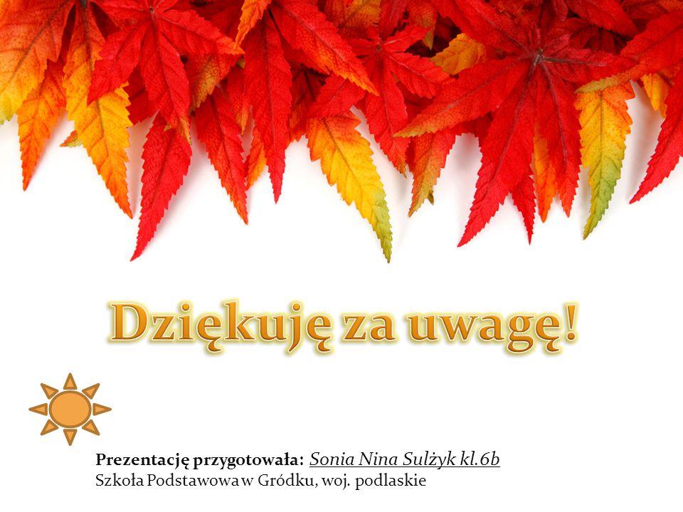 Prezentację przygotowała: Sonia Nina Sulżyk kl.6b Szkoła Podstawowa w Gródku, woj. podlaskie