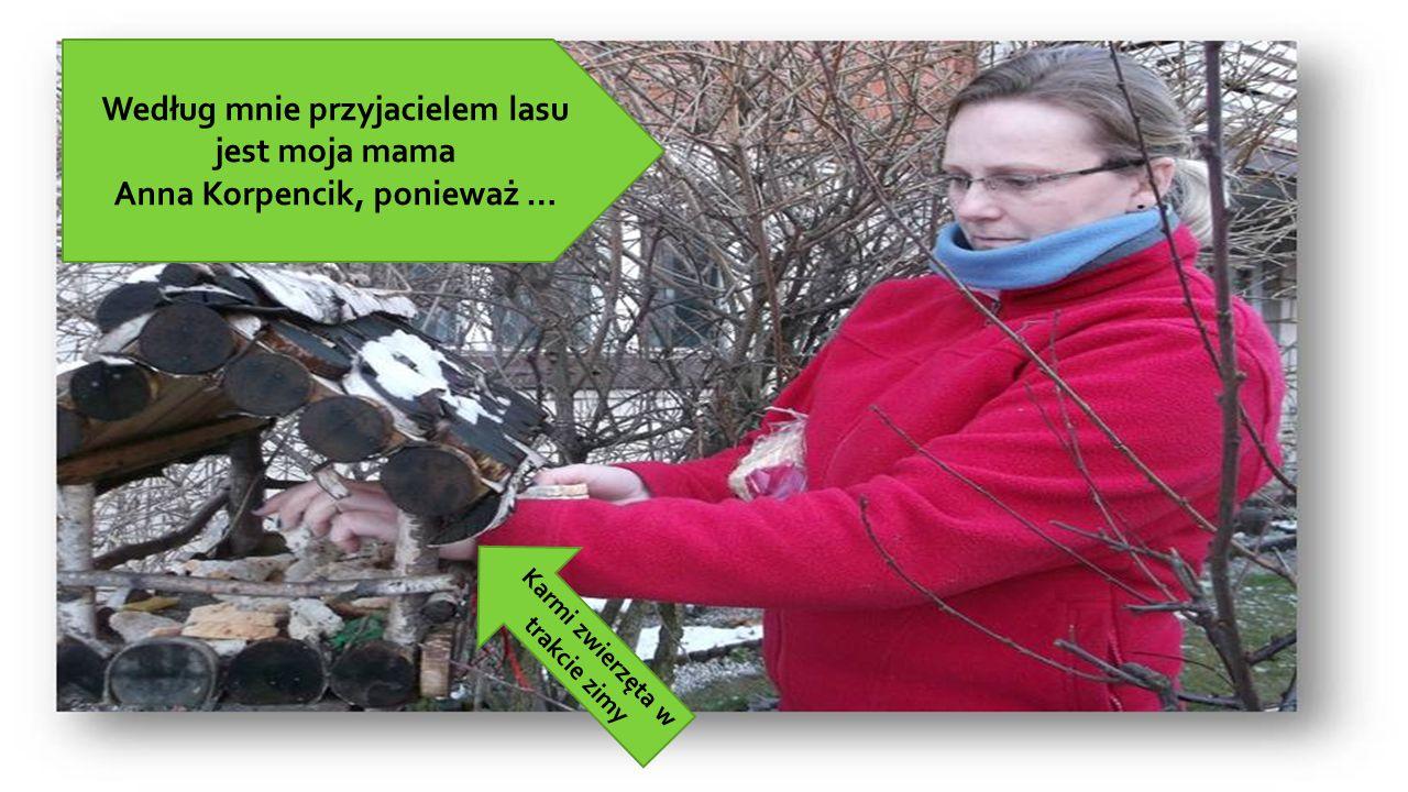 Według mnie przyjacielem lasu jest moja mama Anna Korpencik, ponieważ … Karmi zwierzęta w trakcie zimy