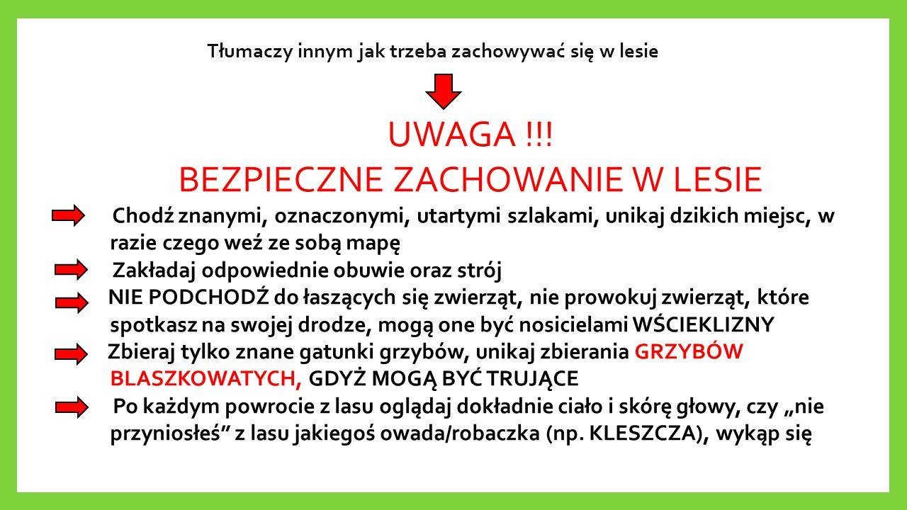 Tłumaczy innym jak trzeba zachowywać się w lesie UWAGA !!! BEZPIECZNE ZACHOWANIE W LESIE Chodź znanymi, oznaczonymi, utartymi szlakami, unikaj dzikich