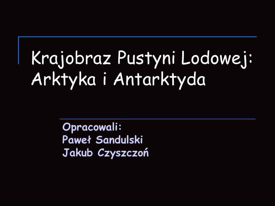 Krajobraz Pustyni Lodowej: Arktyka i Antarktyda Opracowali: Paweł Sandulski Jakub Czyszczoń